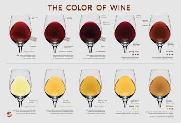 colori_del_vino